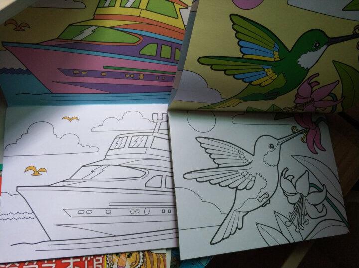 《儿童涂色艺术馆》全12册套装 3-6岁宝宝启蒙绘画图色书【赠12色油画棒 】 晒单图