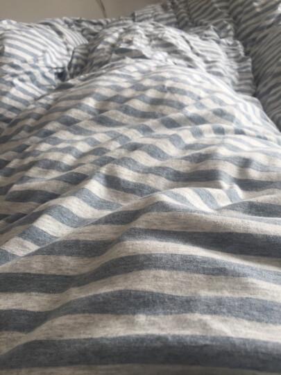 20+艺被天竺棉四件套针织棉全棉条纹床单床笠式纯棉学生宿舍单人床弹性可裸睡床上用品不含荧光剂 粉灰细条 1.8米床床笠款大号 晒单图