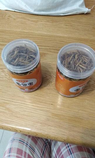 黄粉虫干仓鼠粮面包虫干用品零食鱼食鱼饲料龟粮鸟食 50克 罐装 晒单图