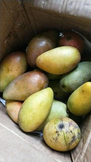 同城果鲜  新鲜水果 大青芒 芒果 4kg  晒单图