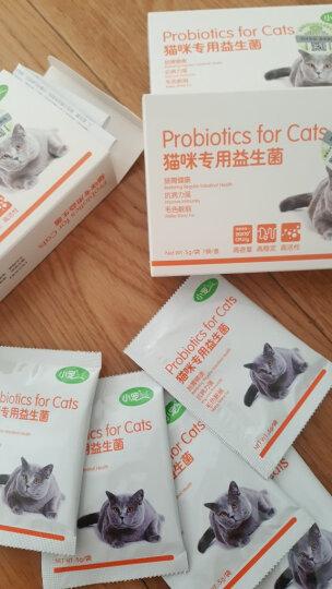 【立减10元】小宠猫用肠胃宝 猫咪益生菌35g 晒单图