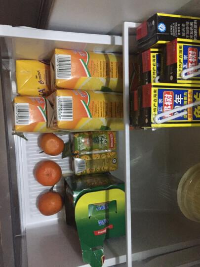 韩国进口 OKF 牧羊人库拉索芦荟果汁饮料 菠萝味果味饮料 500ml*6瓶组合装 晒单图