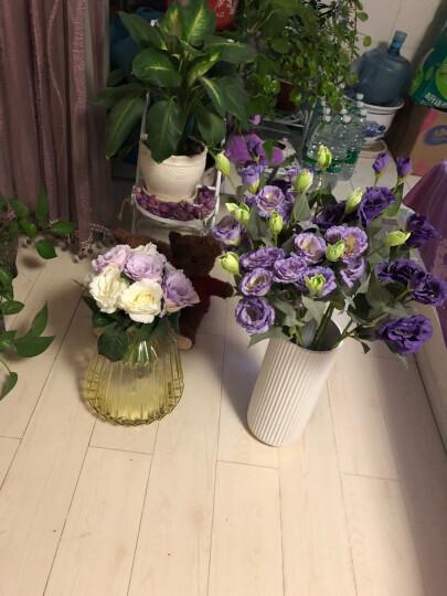 米子家居  居家装饰品仿真花假花干花绢花  辛蒂瑞拉桔梗花 5支深紫色把束 晒单图