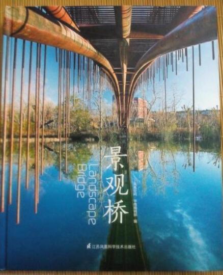 景观桥 晒单图