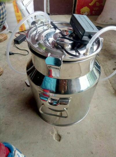羊用吸奶器吸羊奶的挤奶器家用电动奶羊奶牛挤奶机挤羊奶器牛骆驼 电动10斤双头 晒单图