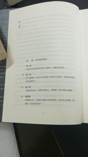 当尼采哭泣(精装) 晒单图