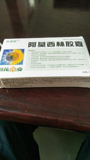 葵花 阿莫西林胶囊  0.25g*20粒 晒单图