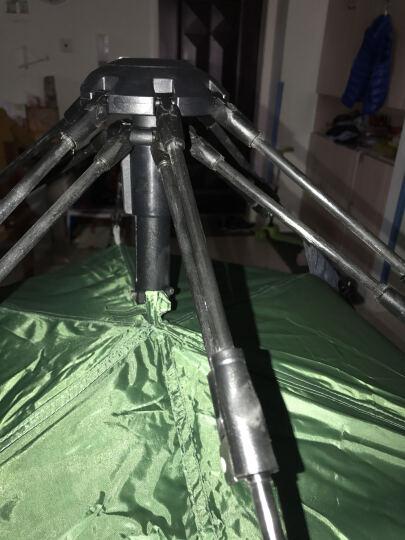 北极狼 (BeiJiLang) 全自动帐篷户外3-4人野营速开帐篷超轻便携 绿色 晒单图