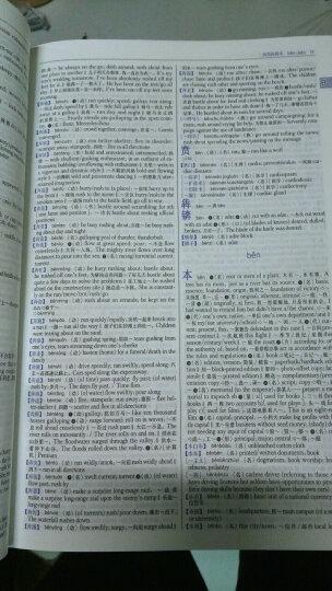 朗文常用英文词根词典(英英·英汉双解) 晒单图