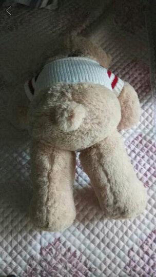 贝壳龙 新款可爱大号兔子公仔毛绒玩具长耳朵小兔子布娃娃玩偶抱枕送女朋友生日礼物 圆眼款-LOVE兔子 95厘米 晒单图