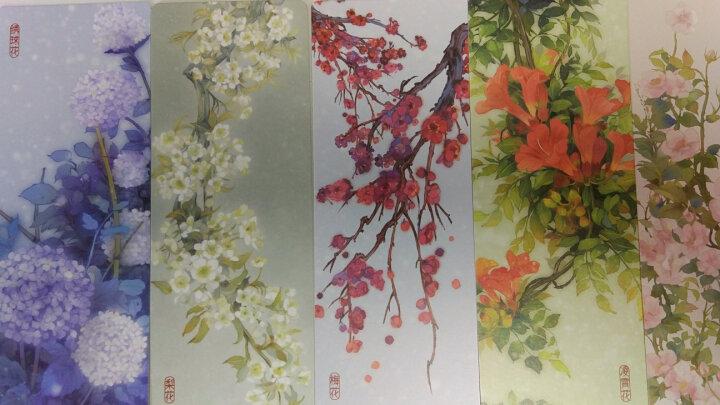 花裳·花签(典藏版) 晒单图