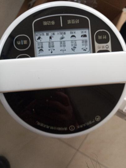九阳(Joyoung)豆浆机破壁机 破壁免滤双预约家用多功能自营同款DJ13B-D86s DJ13B-D86SG 晒单图