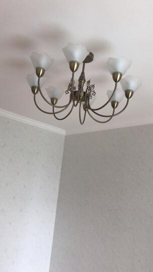 飞利浦(PHILIPS) 吊灯客厅餐厅卧室欧式 美式铁艺北欧简欧创意艺术复古吊灯 白光 柏蕴八头-送LED光源 晒单图