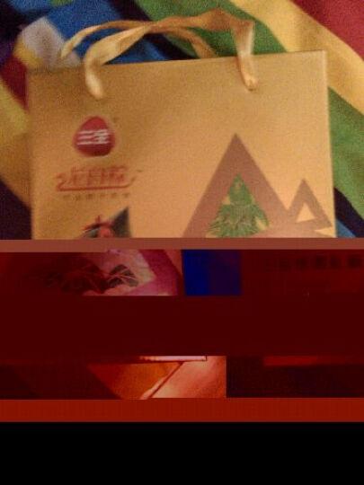 广州酒家粽子礼盒 广东嘉兴肉粽真空裹蒸粽子 端午节礼盒礼品 蛋黄海味咸肉粽240g 晒单图
