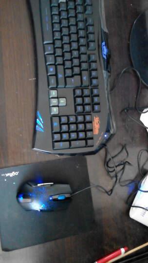 讯拓(Sunt)幽灵蜂AK71周边蓝色发光 多媒体快捷键 游戏键鼠有线套装 晒单图