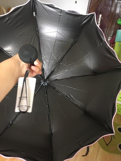 天堂伞 全遮光黑胶萌萌哒鸟三折晴雨伞小黑伞 蓝色 33409E 晒单图