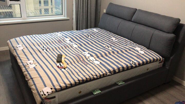 温斯丹尼 床 布艺床 北欧床现代简约实木双人床高箱储物床卧室家具婚床全拆洗床1.8M 2109 床+乳胶床垫+床头柜1个 1800*2000(框架款 标准版) 晒单图