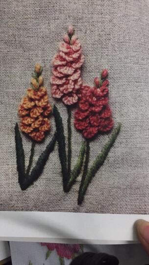 韩风花草绣花、树、果实的立体刺绣 晒单图