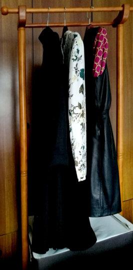 施豪特斯(SHTS)衣帽架 实木双杆衣架移动挂衣架晾衣架TH-M 蜜糖色 晒单图