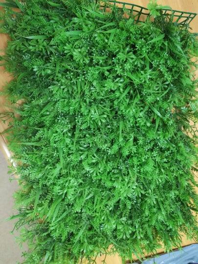 合欢树 定制包设计仿真植物墙尤加利草坪绿化绿植室内绿色立体植物墙壁挂背景墙装饰 桃红(40*60cm/单片价) 晒单图