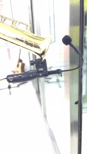 靓韵 LQ无线乐器麦克风舞台演出收音话筒录音电容麦小提琴二胡钢琴萨克斯吉他小号专用拾音麦 单独接收机 晒单图