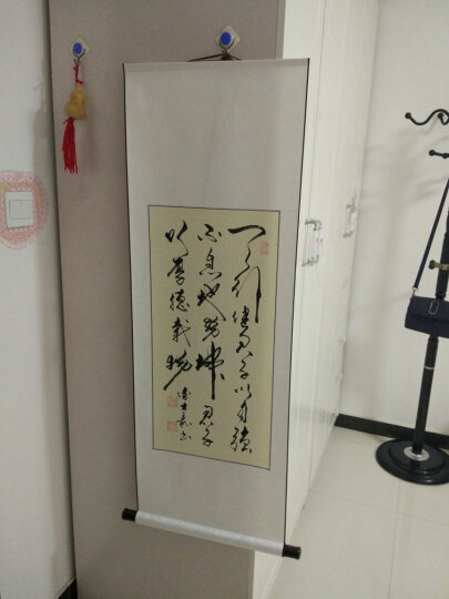 盼宇 家居 卧室 字画 装饰画 壁画 挂画 名家手写真迹 书房客厅办公室 书法已裱成轴相框 卷轴-天行健 晒单图