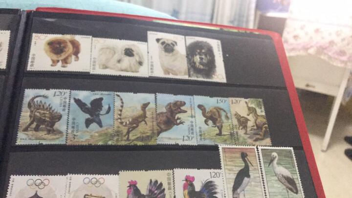 邮票可寄信 东吴收藏 寄信/贴信/寄明信片 邮票 编年系列之三 中国恐龙 6-5 巨盗龙 晒单图