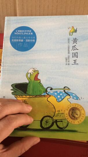 当代外国儿童文学名家克里斯蒂娜·涅斯玲格作品:黄瓜国王 晒单图