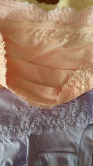 恒源祥女士内裤 莫代尔蕾丝三角内裤低腰无痕短裤 混色4条装175/100 晒单图