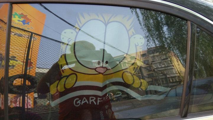 九乘 汽车遮阳挡 加菲猫遮阳帘窗帘 夏季防晒隔热吸盘式 卡通创意磁性磁铁遮阳板 摩丝玫瑰MOC008【四个装】 晒单图
