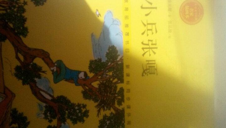 去年的树(名师导读美绘版)/暖心美读书 晒单图