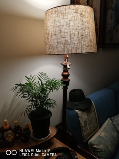 登对(DENGDUI)美式乡村地中海落地灯客厅书房立式台灯创意复古温馨LED结婚婚庆落地台灯装饰灯具 杠杆开关-棕色落地灯 送6瓦LED灯泡 晒单图