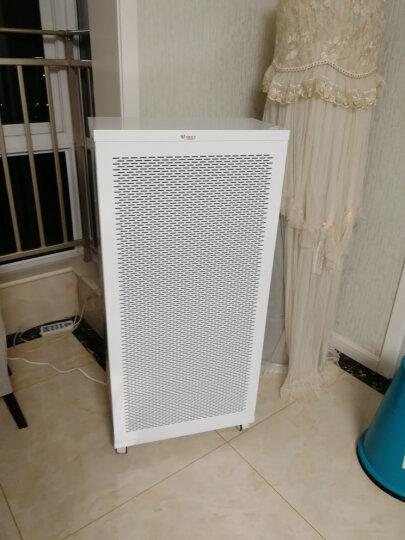 伊斐净宝ffu空气净化器家用除雾霾pm2.5高效工业级大型新房装修去除甲醛移动新风系统机 除甲醛增强版(五层滤网) 晒单图