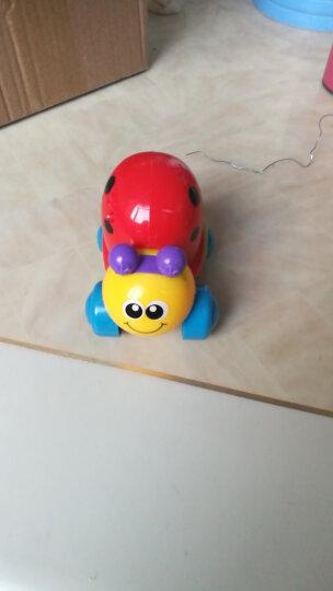 南国婴宝儿童玩具 益智运动爬行电动回转音乐灯光故事早教机趣味水母838-58 晒单图
