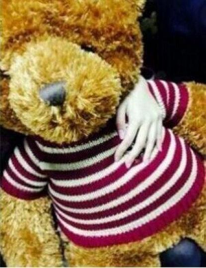 正版泰迪熊 毛绒玩具 大熊公仔可爱熊猫超大号布娃娃抱抱熊玩偶送女生生日礼物 棕色(小熊版配红色毛衣) 1M(送毛衣+围兜+挂件+送仿真玫瑰花) 晒单图
