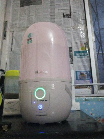 小熊(Bear) 加湿器家用 卧室婴儿静音3L智能恒湿空调房办公室空气净化香薰机JSQ-A30G3 粉色 晒单图