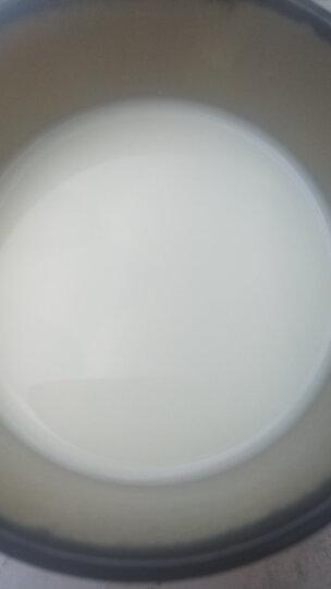 安满(ANMUM) 【旗舰店】孕产妇配方奶粉dha妈妈营养牛奶粉(新西兰原装进口)智孕宝300g 二盒 晒单图
