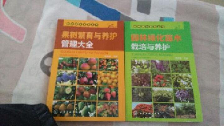 区域包邮园林苗木繁育丛书--园林绿化苗木栽培与养护+果树繁育与养护管理大全  2本 晒单图