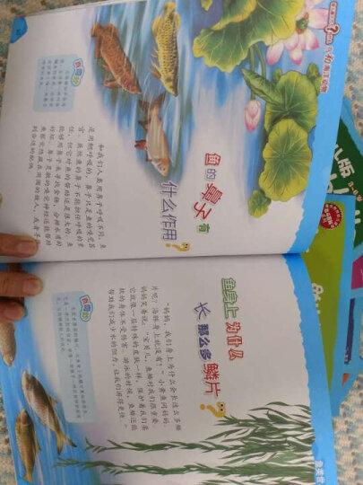 北斗童书·幼儿版十万个为什么(套装全8册) 晒单图