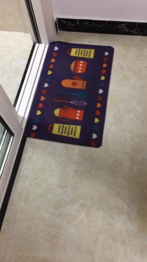 misslai地垫定制防滑进门玄关门垫换鞋地垫可水洗进门垫 灰黑色四叶草 50cm*80cm 晒单图