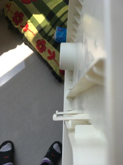 宝贝萌主(jolobebe) 宝宝餐椅儿童便携式吃饭椅高低可调宜家婴儿多功能餐椅塑料餐桌 绿色 基础款 晒单图