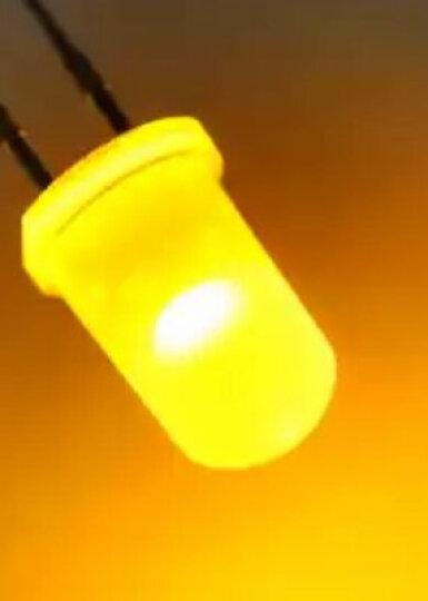 TaoTimeClub LED灯 发光二极管 5MM 圆头 雾状白发黄光 灯珠 (10只) 晒单图