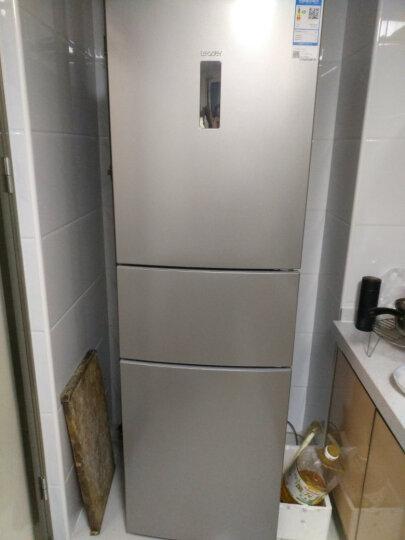 海尔冰箱258升三门风冷无霜节能小冰箱家用电冰箱 Leader/统帅 海尔出品 晒单图