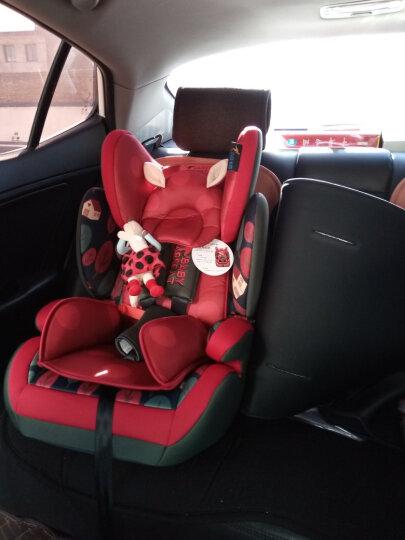 贝贝卡西 【官方旗舰】汽车儿童安全座椅车载宝宝坐椅婴幼儿座椅汽车用增高坐垫9个月-7-12岁3C认证 升级款-静谧丛林 晒单图