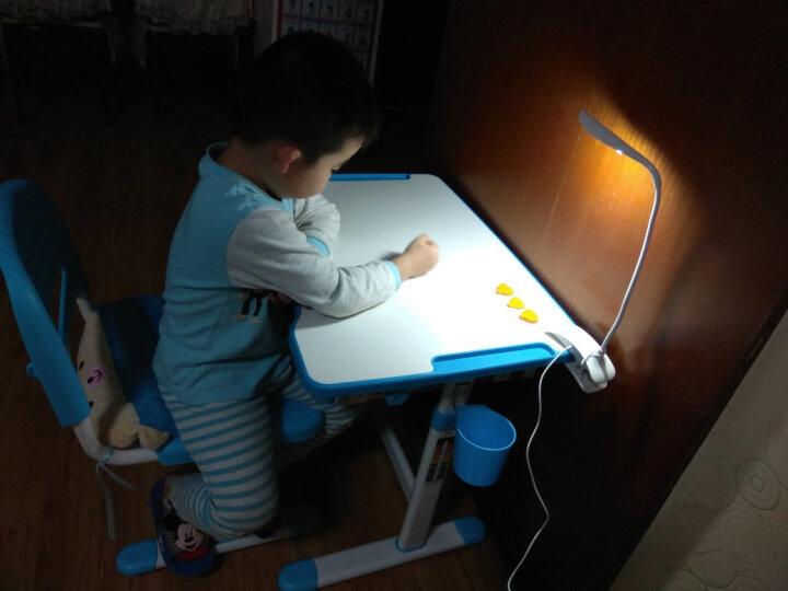 童星 儿童学习桌椅套装 可升降小学生书桌小孩写字桌家用桌子 课桌椅套装组合套餐多功能 B203灰色-绘画型 晒单图