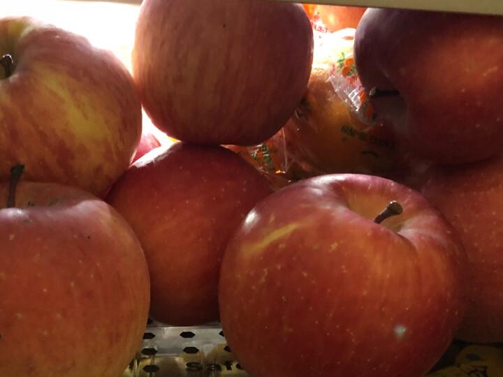 柏果瑞 甘肃静宁红富士苹果 高档礼盒 果径90mm12枚精品大果约4kg 新鲜水果 晒单图