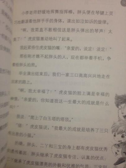 杨红樱笑猫日记:转动时光的伞 晒单图