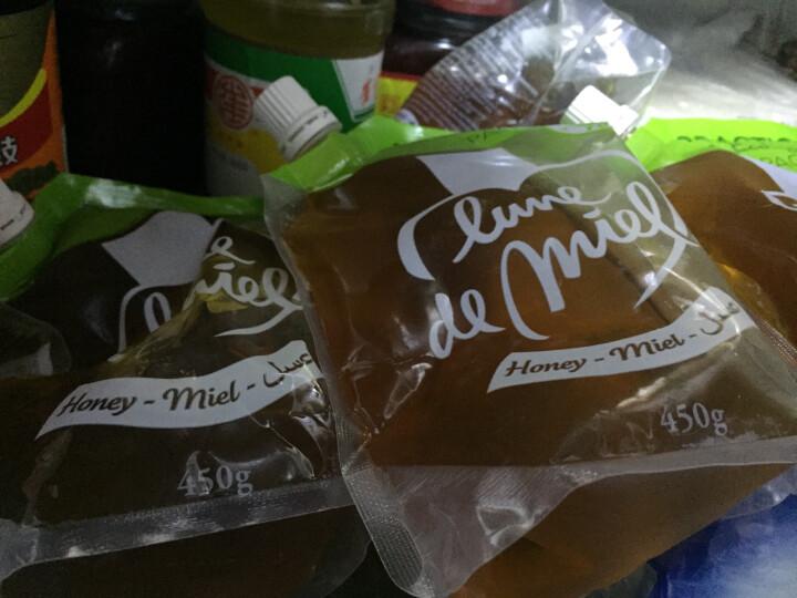 法国进口 LUNE DE MIEL蜜月原味蜂蜜便利装450g 晒单图