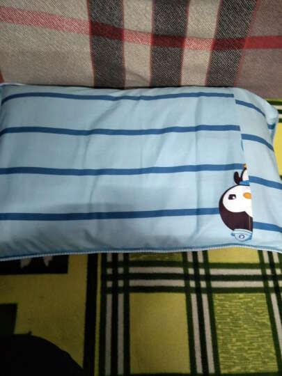 宫品儿童枕头婴幼枕芯全棉枕套0-6岁小孩子枕芯幼儿园宝宝学生枕头 小猪佩琪 30*50cm(一个) 晒单图