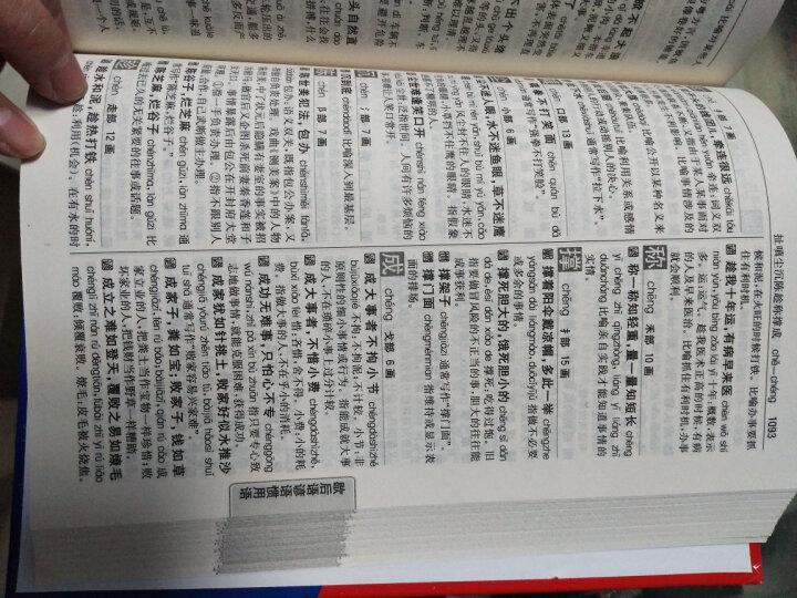 现代汉语同义 近义 反义 组词 造句 多音多义字 易错易混字 歇后语 谚语 惯用语 例解大全(新课标) 晒单图